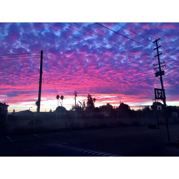 sunset sarah